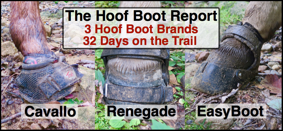 Bernie Harberts, Bernie Harberts photo, Julie Carpenter, riverearth.com, barefoot hoof trim, cavallo boot, easy boot, renegade boot, mule, horse, trail ride, hoof boot comparison, what is best hoof boot