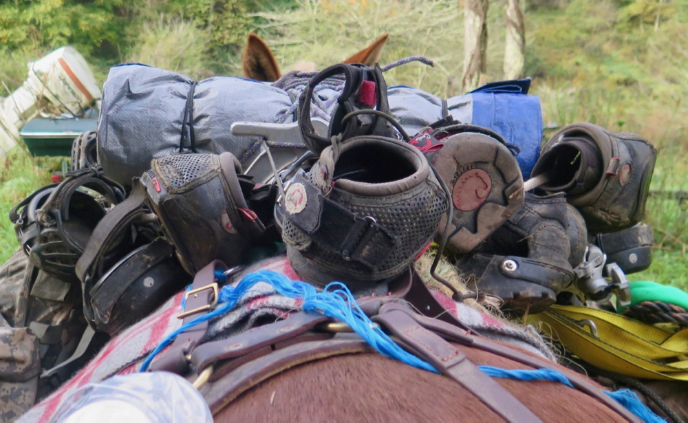 Bernie Harberts, Bernie Harberts photo, Julie Carpenter, cavallo hoof boot, renegade hoof boot, easyboot hoof boot, barefoot hoof trim, trail ride, mule, mule hoof