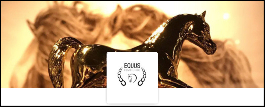 Bernie Harberts, Equus film festival, horse, adventure, lost sea expedition, amazon prime