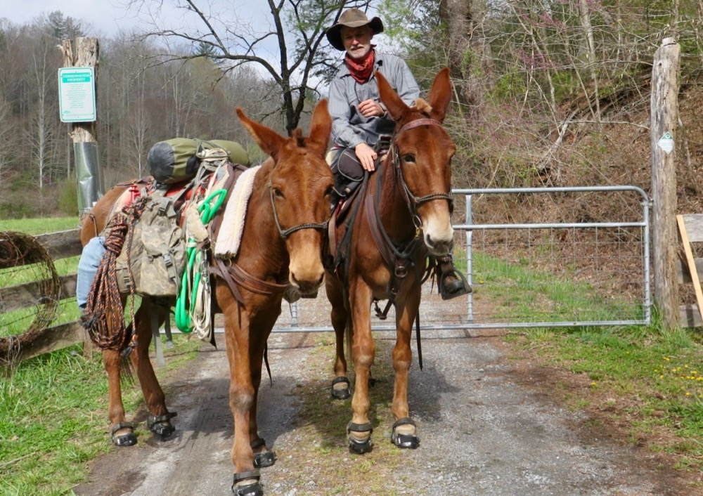 Bernie Harberts, mule, trail ride, adventure, fence