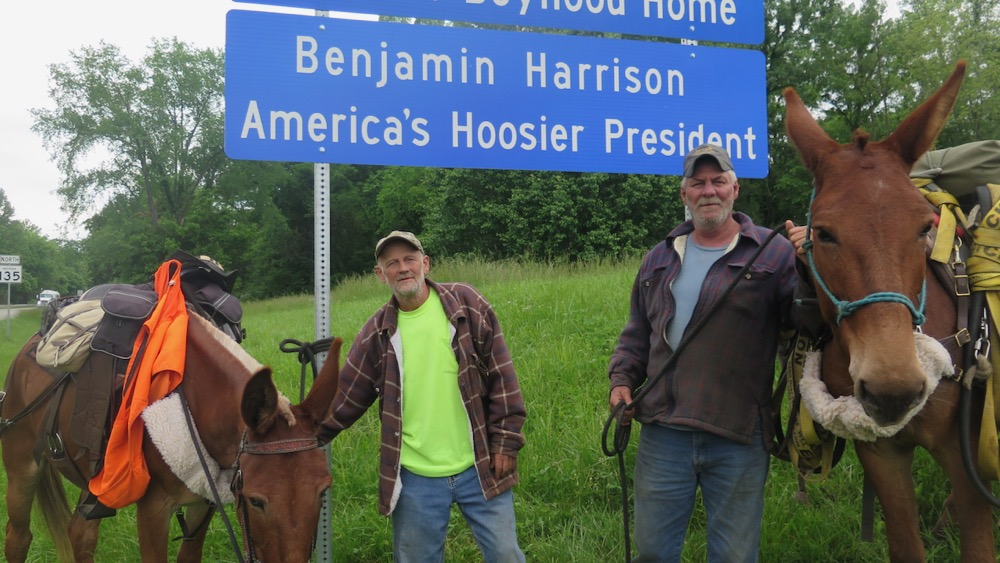 Bernie Harberts, mule, trail ride, pat green, jack nunn