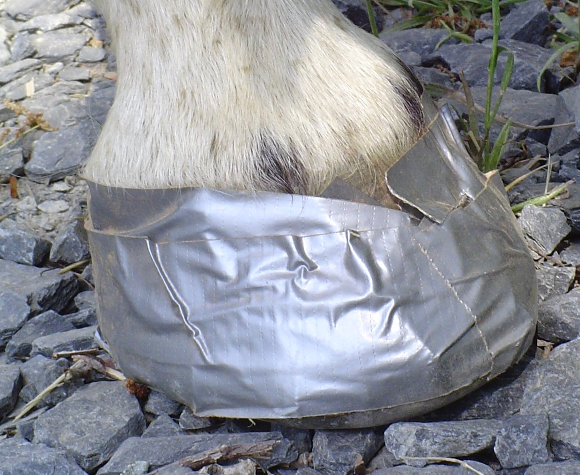 Bernie Harberts, Bernie Harberts photo, Julie Carpenter, home made hoof boot, duct tape hoof boot, horse, mule, trail ride, hoof