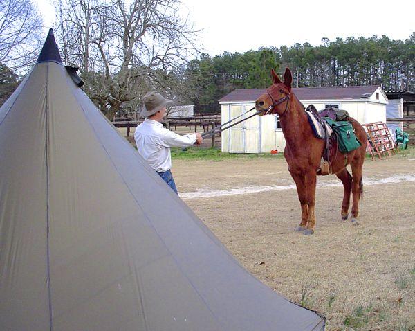 mule woody tipi